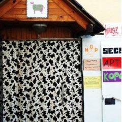 Гостиница Zazazoo Hostel в Москве - забронировать гостиницу Zazazoo Hostel, цены и фото номеров Москва бассейн