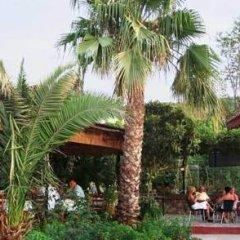 Native Hotel Турция, Олудениз - отзывы, цены и фото номеров - забронировать отель Native Hotel онлайн