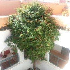 Отель Dar El Kharaz фото 14