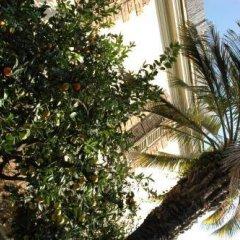 Отель Lodi Италия, Рим - отзывы, цены и фото номеров - забронировать отель Lodi онлайн пляж