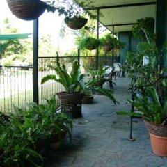 Отель Daintree Wild Zoo & Bed and Breakfast фото 7