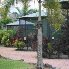 Отель Daintree Wild Zoo & Bed and Breakfast фото 9