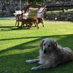Hotel Rural Posada San Pelayo с домашними животными