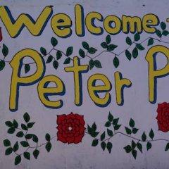 Отель Peterpan Guest House Южная Корея, Тэгу - отзывы, цены и фото номеров - забронировать отель Peterpan Guest House онлайн фото 2