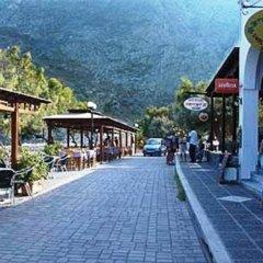 Отель Villa Gambas Греция, Остров Санторини - отзывы, цены и фото номеров - забронировать отель Villa Gambas онлайн фото 3