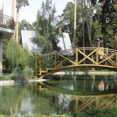 Мини-отель Ривьера бассейн
