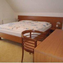 Отель Bazant Чехия, Карловы Вары - отзывы, цены и фото номеров - забронировать отель Bazant онлайн комната для гостей фото 3
