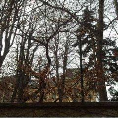Отель Vienna Bishop's Residence Австрия, Вена - отзывы, цены и фото номеров - забронировать отель Vienna Bishop's Residence онлайн приотельная территория фото 2