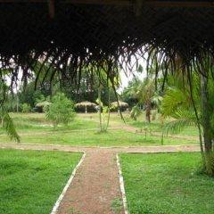 Отель Mangrove Villa Шри-Ланка, Бентота - отзывы, цены и фото номеров - забронировать отель Mangrove Villa онлайн фото 6