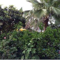 Hotel Marin - All Inclusive фото 5