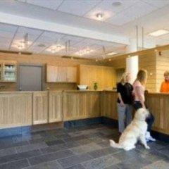 Отель Myrkdalen Fjellandsby с домашними животными