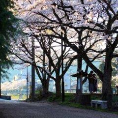 Отель Kiya Ryokan Япония, Мисаса - отзывы, цены и фото номеров - забронировать отель Kiya Ryokan онлайн фото 8