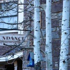 Отель Accommodations in Telluride США, Сильвертон - отзывы, цены и фото номеров - забронировать отель Accommodations in Telluride онлайн