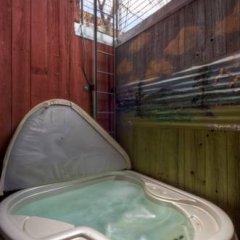 Отель Accommodations in Telluride США, Сильвертон - отзывы, цены и фото номеров - забронировать отель Accommodations in Telluride онлайн бассейн фото 2