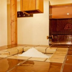 Апартаменты Apartment Tourist Complex & SPA Astera Bansko интерьер отеля фото 3