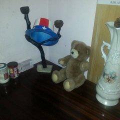 Taz Hostel с домашними животными