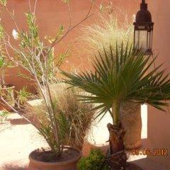 Отель Dar El Kharaz фото 12