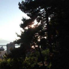 Kale Турция, Гиресун - отзывы, цены и фото номеров - забронировать отель Kale онлайн пляж