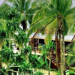 Отель Club Fiji Resort фото 12