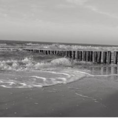 Отель Fletcher Landgoedhotel Renesse Нидерланды, Ренессе - отзывы, цены и фото номеров - забронировать отель Fletcher Landgoedhotel Renesse онлайн пляж фото 2