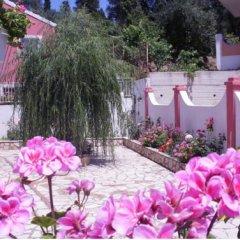 Отель Skevoulis Studios Греция, Корфу - отзывы, цены и фото номеров - забронировать отель Skevoulis Studios онлайн фото 31