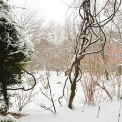 Апартаменты Nanuk Apartment 2 Мюнхен приотельная территория
