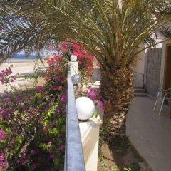 Darna Village Beach Hostel фото 11