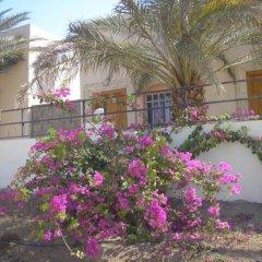 Darna Village Beach Hostel фото 12