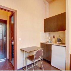 Апартаменты STN Apartments near Kazan Cathedral Санкт-Петербург удобства в номере фото 2