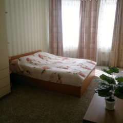 Апартаменты Apartments on Radishcheva комната для гостей фото 4