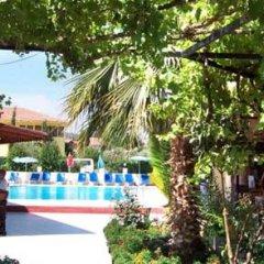 Native Hotel Турция, Олудениз - отзывы, цены и фото номеров - забронировать отель Native Hotel онлайн детские мероприятия фото 2