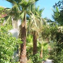 Native Hotel Турция, Олудениз - отзывы, цены и фото номеров - забронировать отель Native Hotel онлайн фото 2