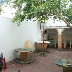 Отель Lion Hostel Мексика, Гвадалахара - отзывы, цены и фото номеров - забронировать отель Lion Hostel онлайн фото 4