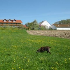 Отель Ferienhof Rieger фото 2
