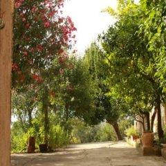 Отель B&B L'Oleandro Италия, Лорето-Апрутино - отзывы, цены и фото номеров - забронировать отель B&B L'Oleandro онлайн фото 3