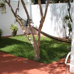 Отель Lion Hostel Мексика, Гвадалахара - отзывы, цены и фото номеров - забронировать отель Lion Hostel онлайн фото 6