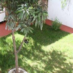 Отель Lion Hostel Мексика, Гвадалахара - отзывы, цены и фото номеров - забронировать отель Lion Hostel онлайн фото 7