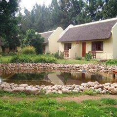 Отель Rosedale Organic Farm Bed & Breakfast бассейн