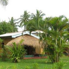 Отель Mangrove Villa Шри-Ланка, Бентота - отзывы, цены и фото номеров - забронировать отель Mangrove Villa онлайн фото 12