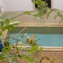 Отель Riad Tajpa Марокко, Марракеш - отзывы, цены и фото номеров - забронировать отель Riad Tajpa онлайн бассейн