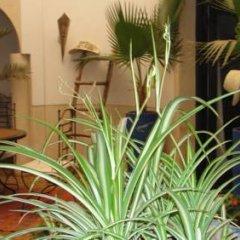 Отель Riad Tajpa Марокко, Марракеш - отзывы, цены и фото номеров - забронировать отель Riad Tajpa онлайн помещение для мероприятий