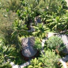 Отель Sofitel Bora Bora Marara Beach Resort Французская Полинезия, Бора-Бора - отзывы, цены и фото номеров - забронировать отель Sofitel Bora Bora Marara Beach Resort онлайн фото 5