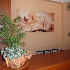 Hotel Afea интерьер отеля