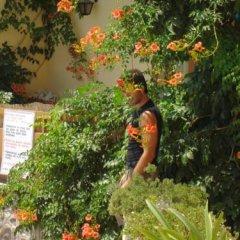 Hotel Afea фото 2