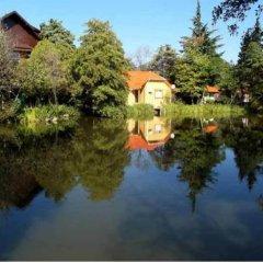 Эко-отель Озеро Дивное фото 3
