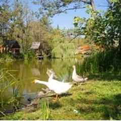Эко-отель Озеро Дивное фото 4