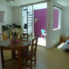 Апартаменты Sunflower Apartment near Coyoacan District Мехико комната для гостей фото 2