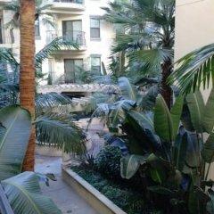 Отель Residences at 616 фото 3