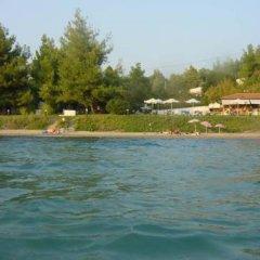 Отель Para Thin Alos Греция, Ситония - отзывы, цены и фото номеров - забронировать отель Para Thin Alos онлайн приотельная территория