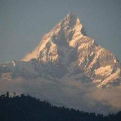 Отель Lotus Inn Непал, Покхара - отзывы, цены и фото номеров - забронировать отель Lotus Inn онлайн фото 9